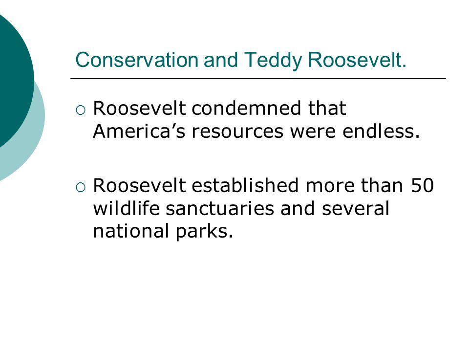 Conservation and Teddy Roosevelt.