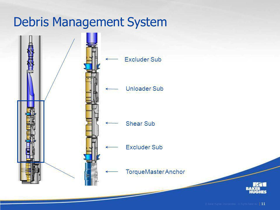 Debris Management System