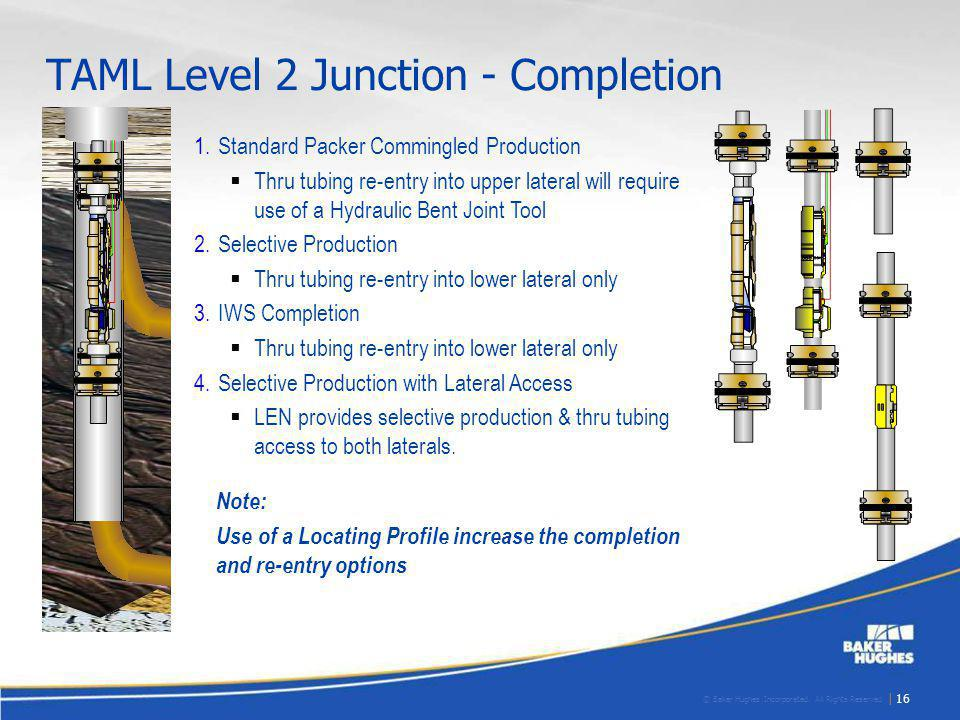 TAML Level 2 Junction - Completion