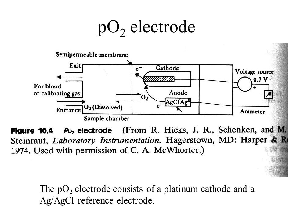 pO2 electrode The pO2 electrode consists of a platinum cathode and a Ag/AgCl reference electrode.