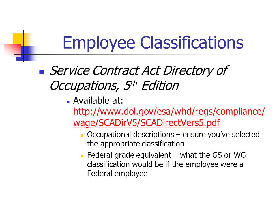 Employee Classifications