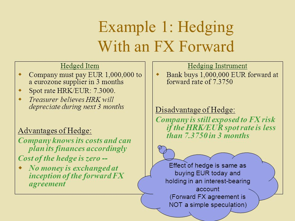 Example 1: Hedging With an FX Forward