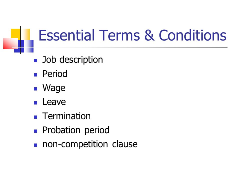 Essential Terms & Conditions