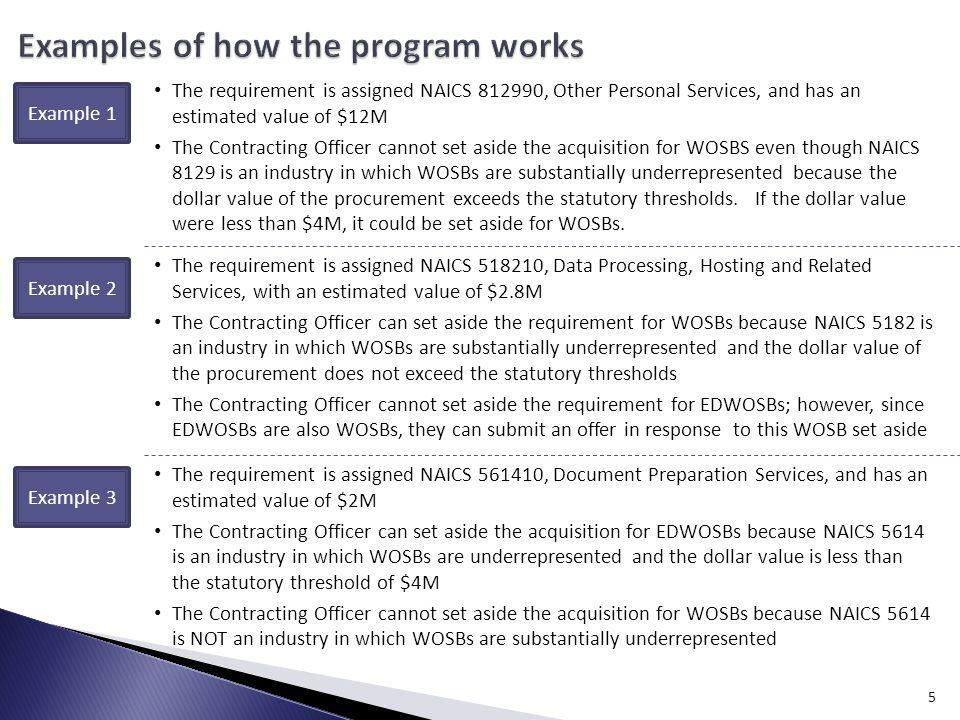 Examples of how the program works