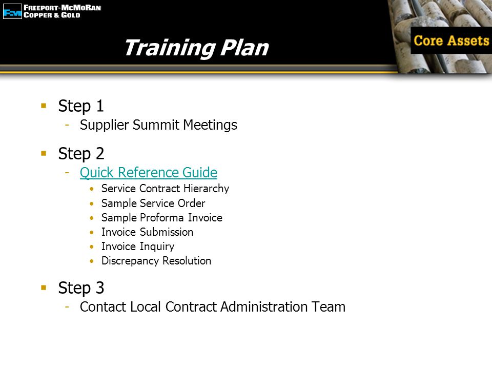 Training Plan Step 1 Step 2 Step 3 Supplier Summit Meetings