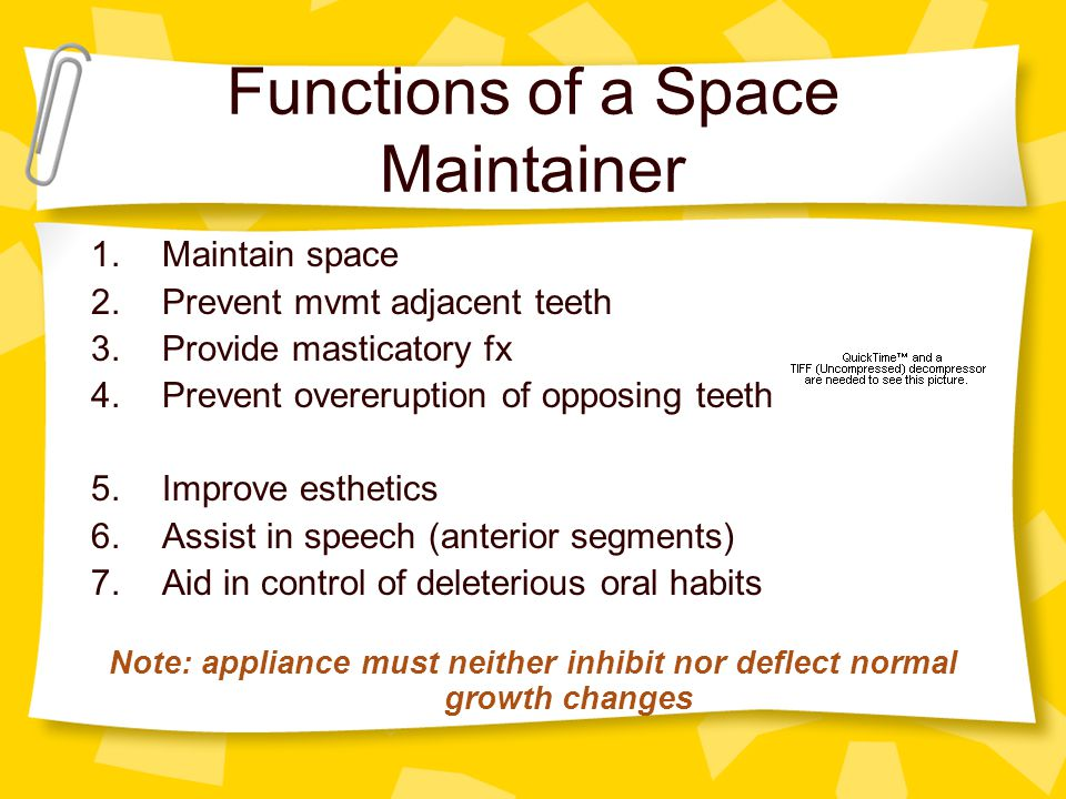 Functions of a Space Maintainer