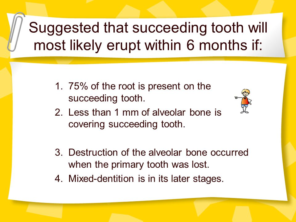 Suggested that succeeding tooth will most likely erupt within 6 months if: