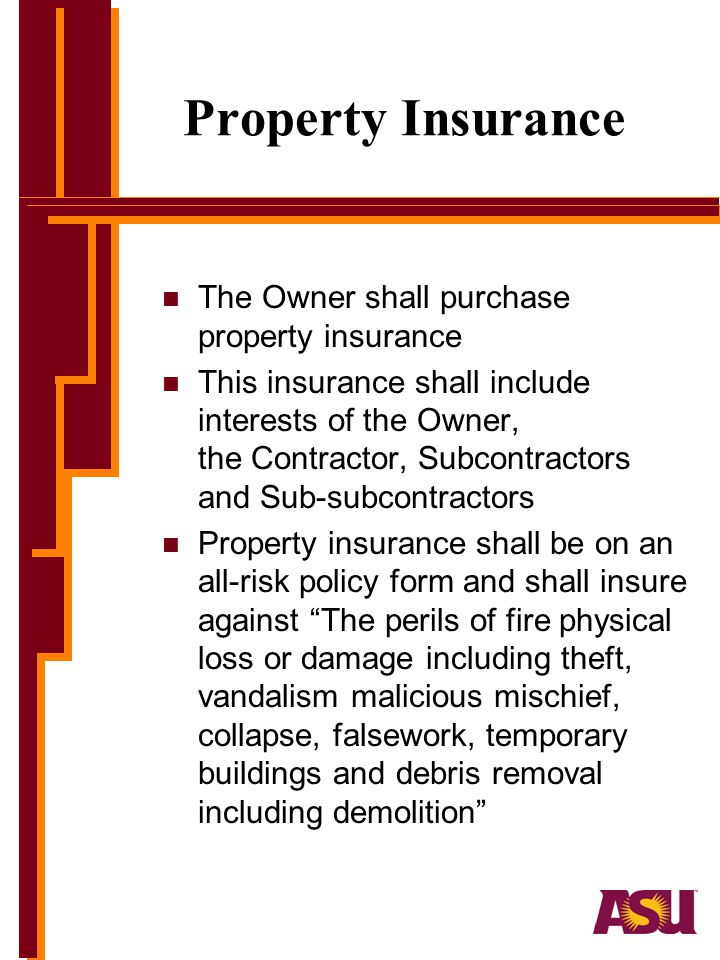 Property Insurance The Owner shall purchase property insurance