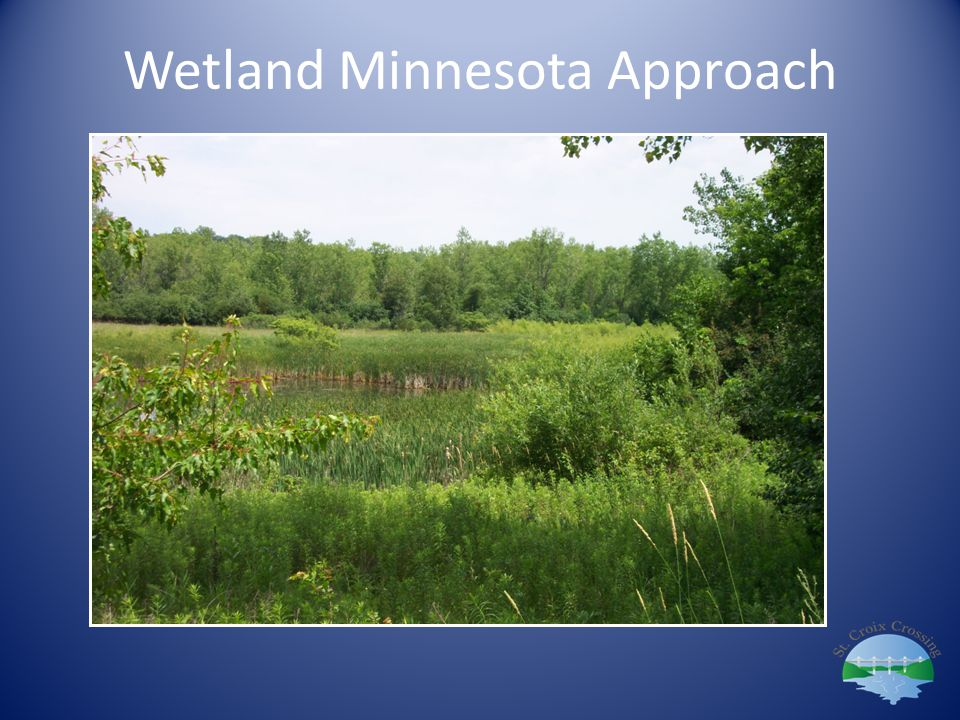 Wetland Minnesota Approach