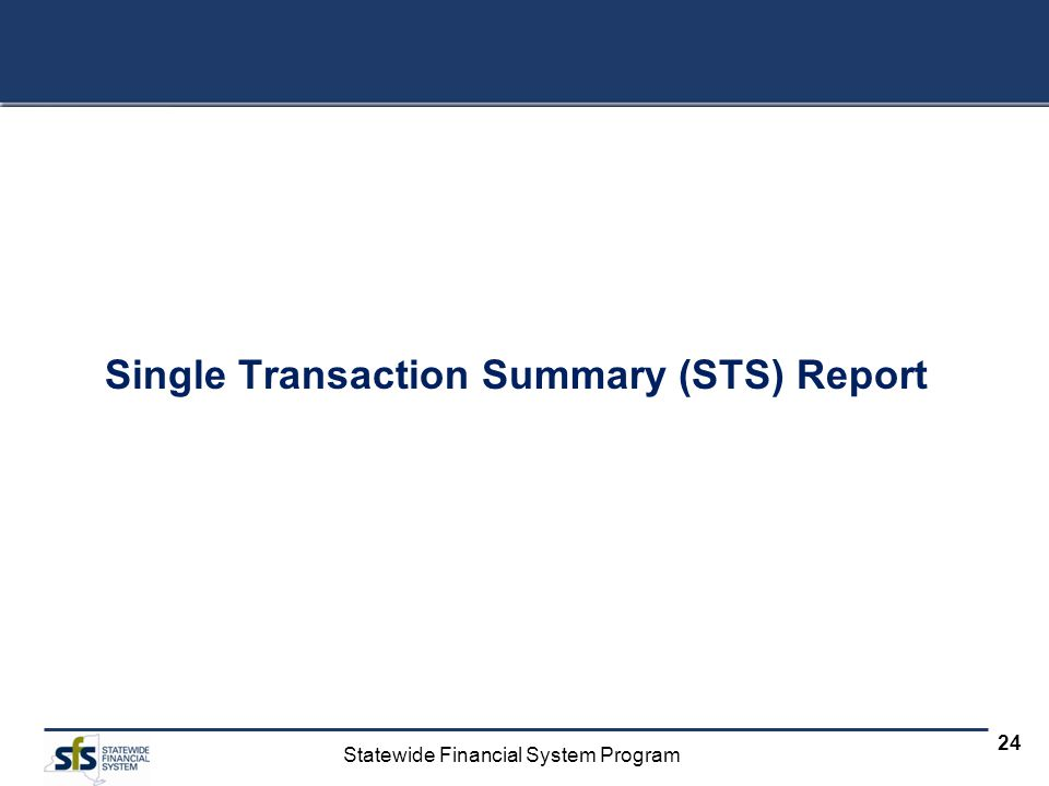 Single Transaction Summary (STS) Report