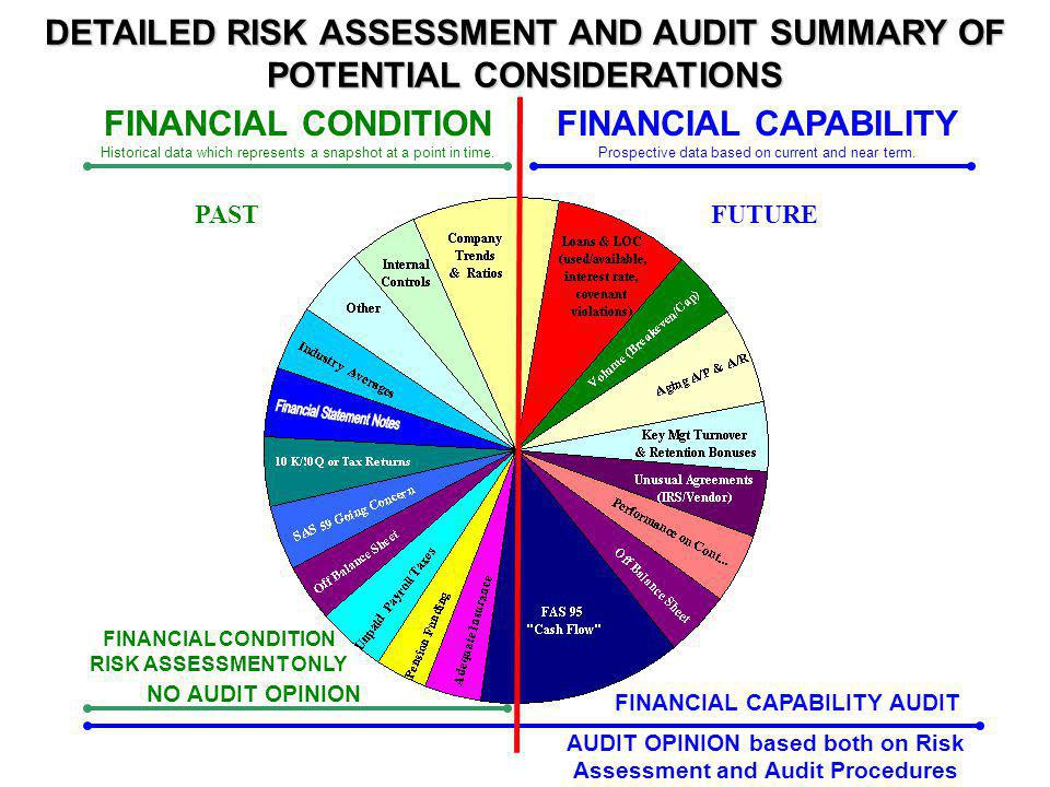 DETAILED RISK ASSESSMENT AND AUDIT SUMMARY OF POTENTIAL CONSIDERATIONS