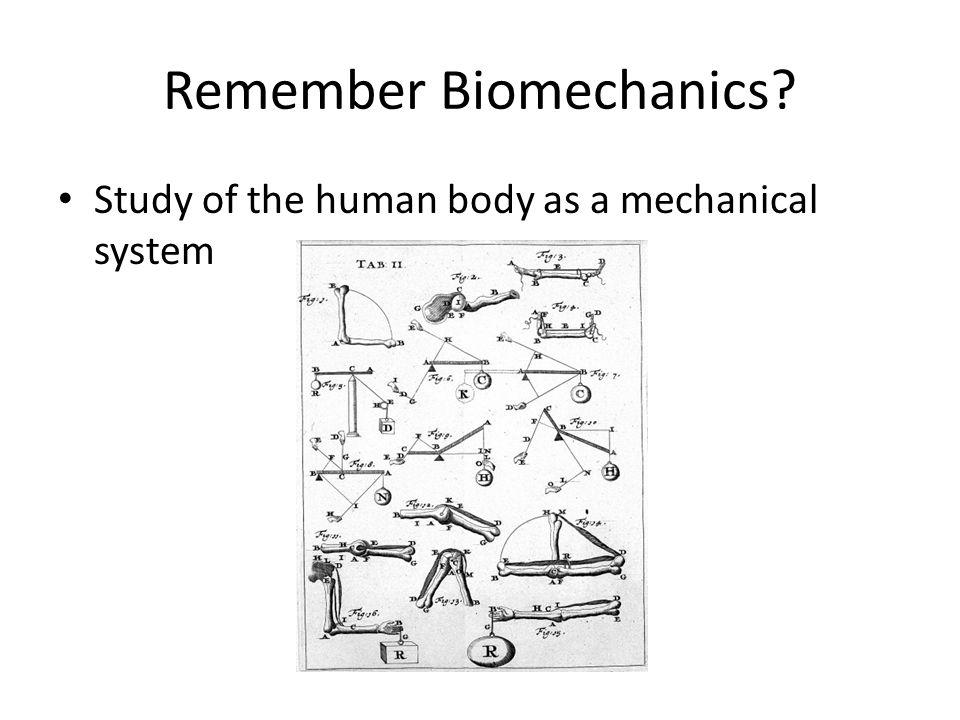 Remember Biomechanics
