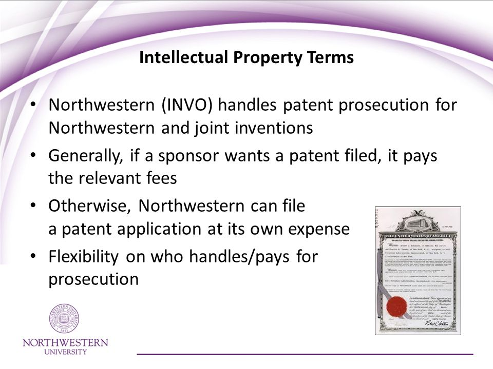 Intellectual Property Terms