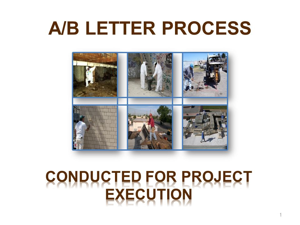 Conducted for Project Execution
