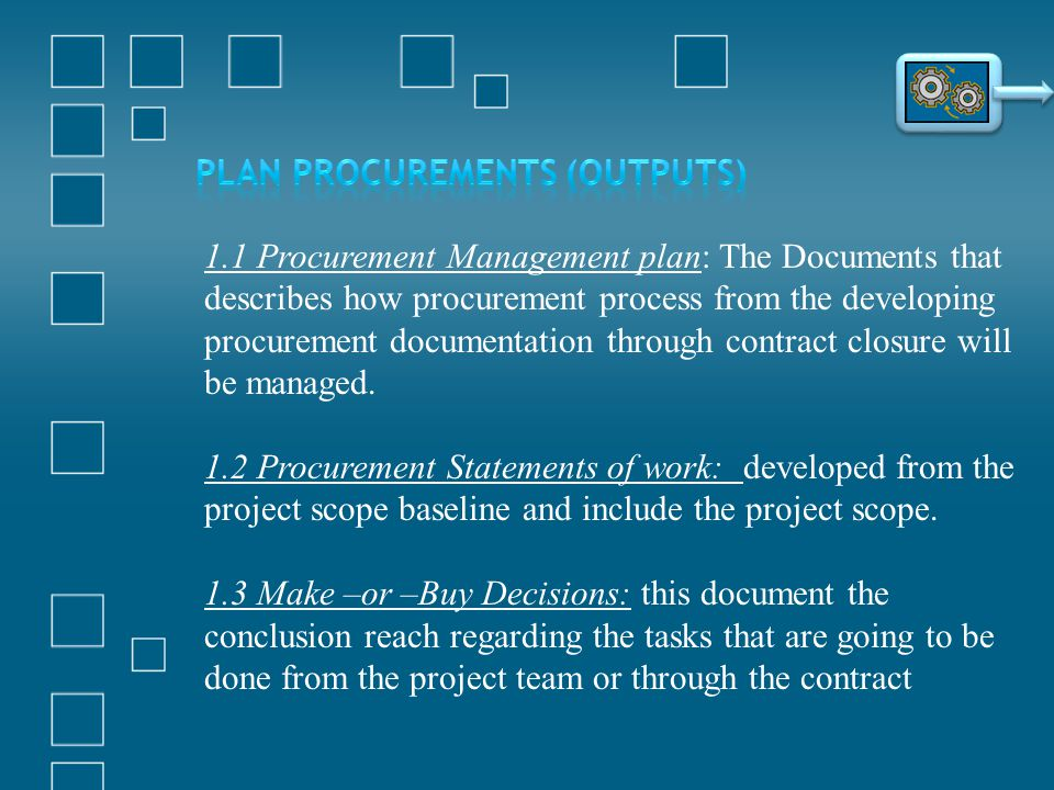 Plan Procurements (Outputs)