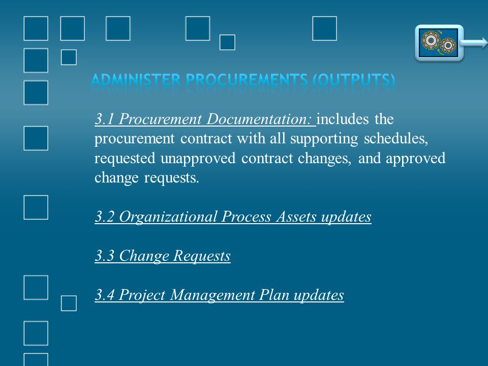 Administer Procurements (Outputs)