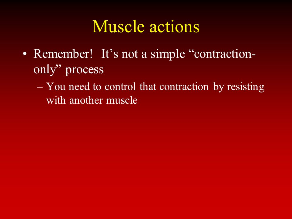 Muscle actions Remember! It's not a simple contraction-only process