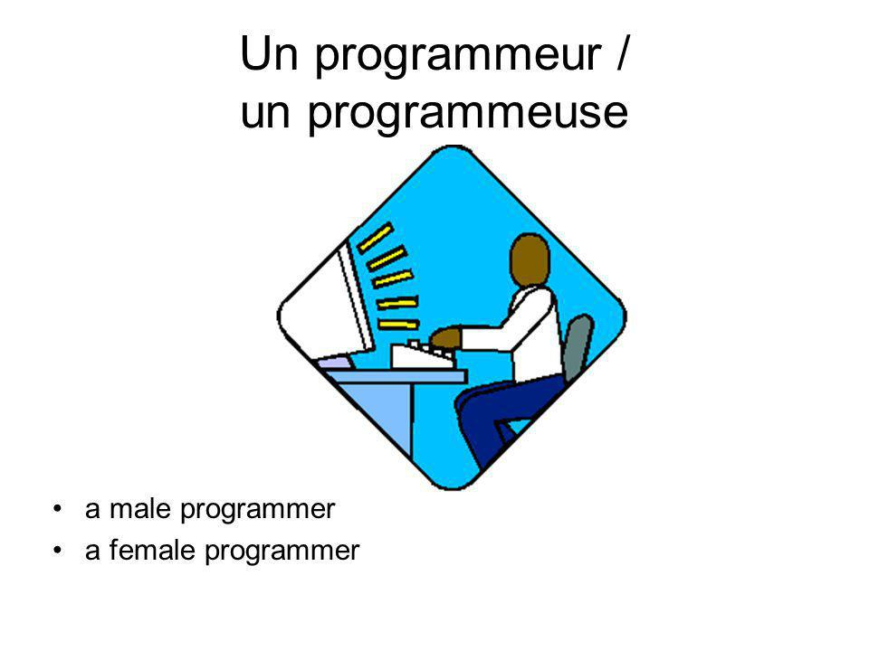 Un programmeur / un programmeuse