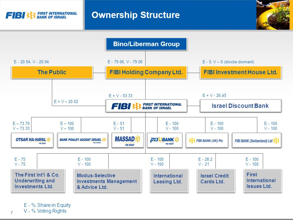Ownership Structure Bino/Liberman Group The Public