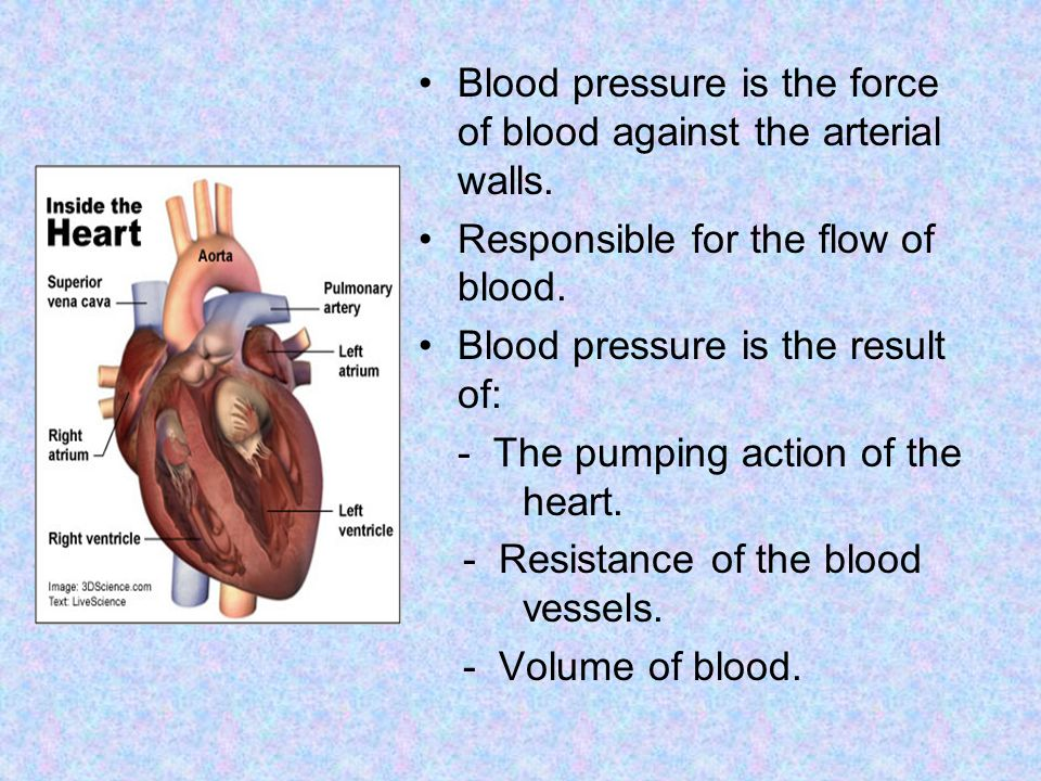 Blood pressure is the force of blood against the arterial walls.