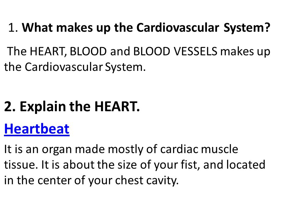1. What makes up the Cardiovascular System