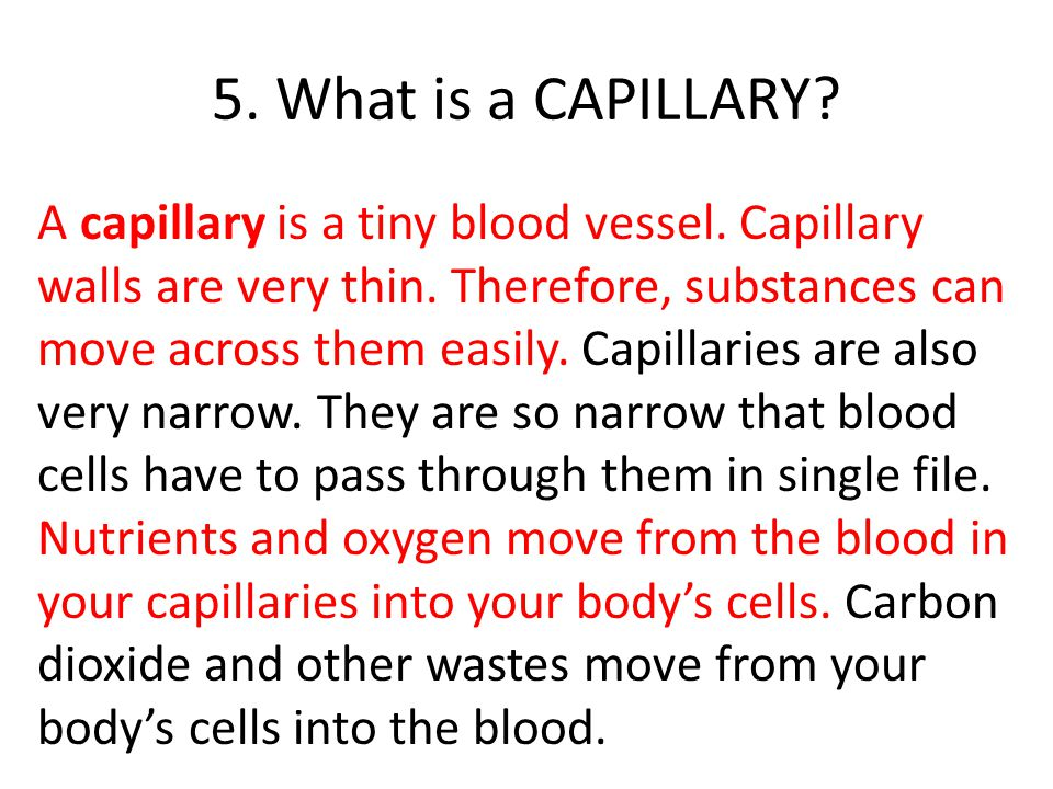 5. What is a CAPILLARY