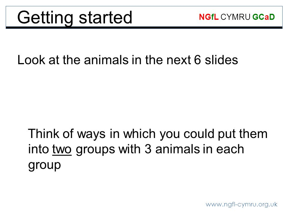 Getting started Look at the animals in the next 6 slides