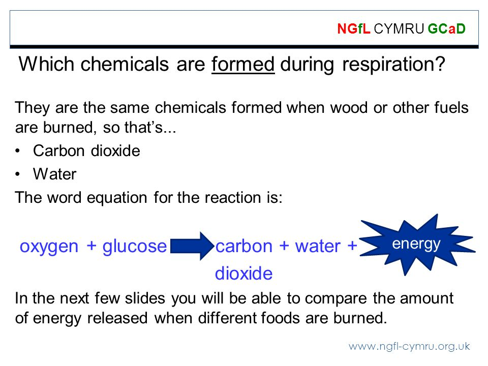Which chemicals are formed during respiration