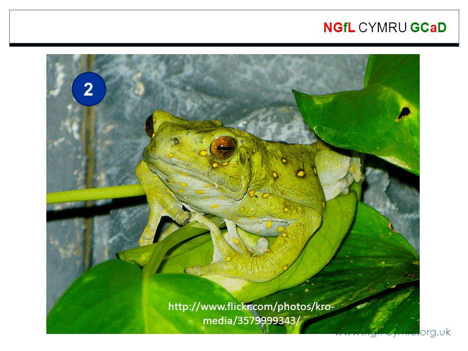 2 http://www.flickr.com/photos/kro-media/3579999343/