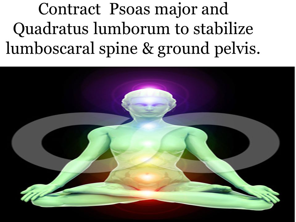Contract Psoas major and Quadratus lumborum to stabilize lumboscaral spine & ground pelvis.