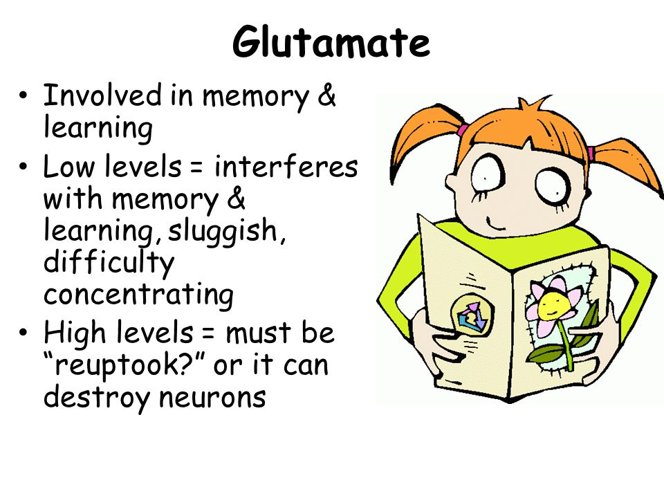 Glutamate Involved in memory & learning