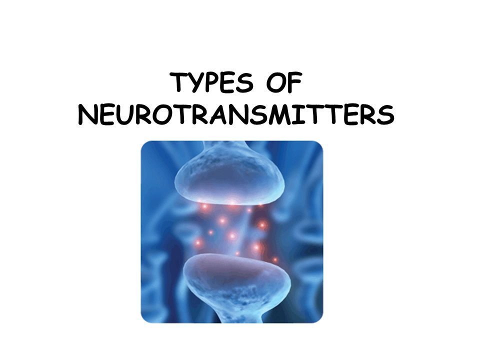 Types of Neurotransmitters