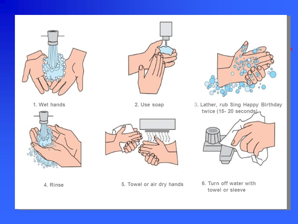 1. Wet hands 2. Use soap. 3. Lather, rub Sing Happy Birthday. twice (15- 20 seconds) 4. Rinse. 5. Towel or air dry hands.