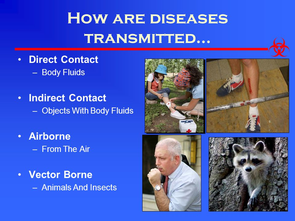 How are diseases transmitted…
