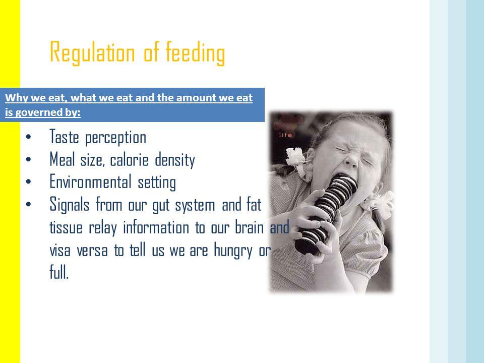 Regulation of feeding Taste perception Meal size, calorie density