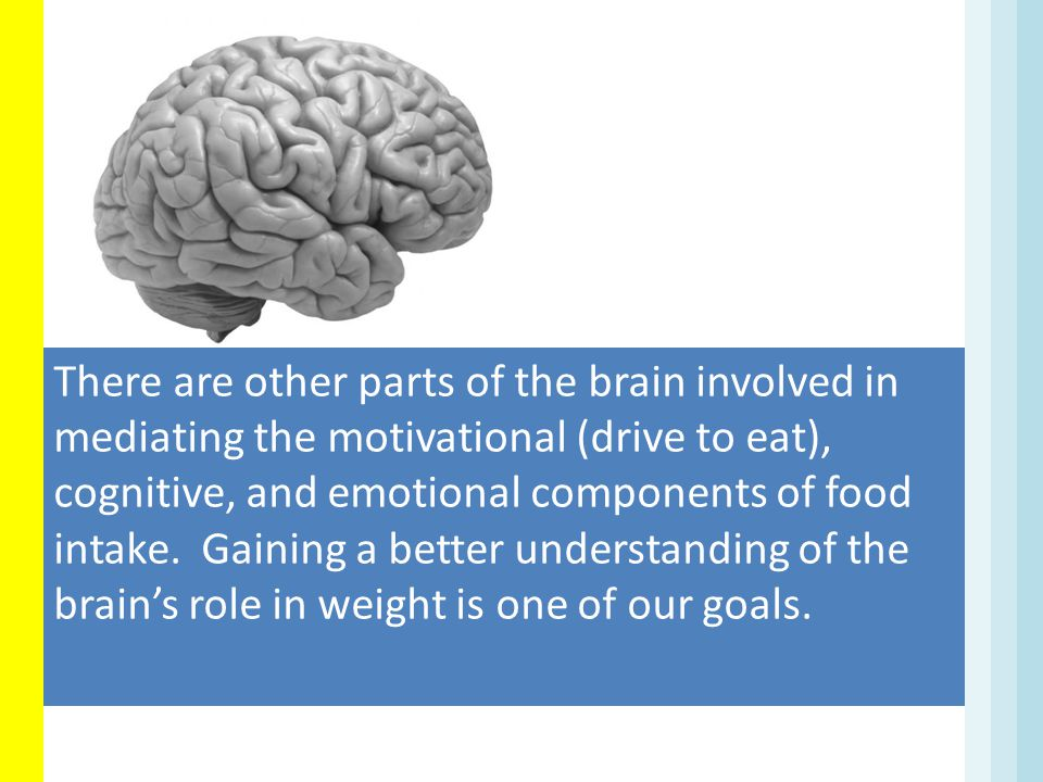 There are other parts of the brain involved in mediating the motivational (drive to eat), cognitive, and emotional components of food intake.