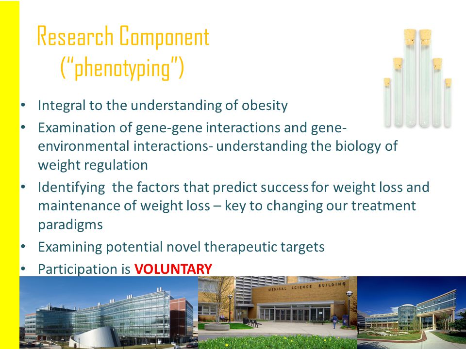 Research Component ( phenotyping )