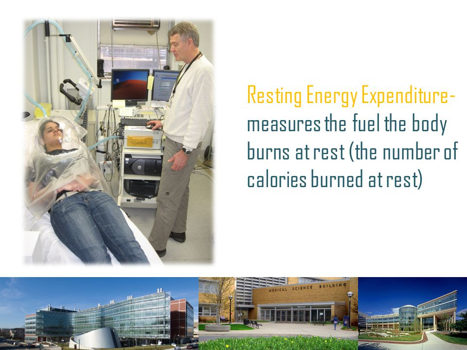Resting Energy Expenditure-measures the fuel the body burns at rest (the number of calories burned at rest)