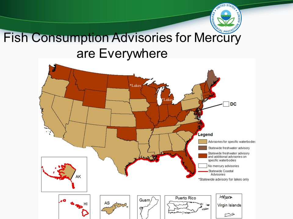 Fish Consumption Advisories for Mercury are Everywhere