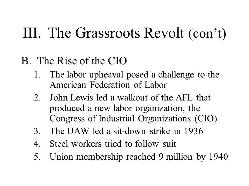 III. The Grassroots Revolt (con't)