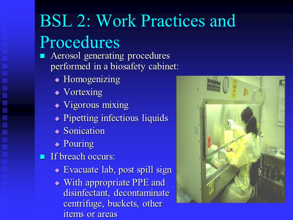 BSL 2: Work Practices and Procedures