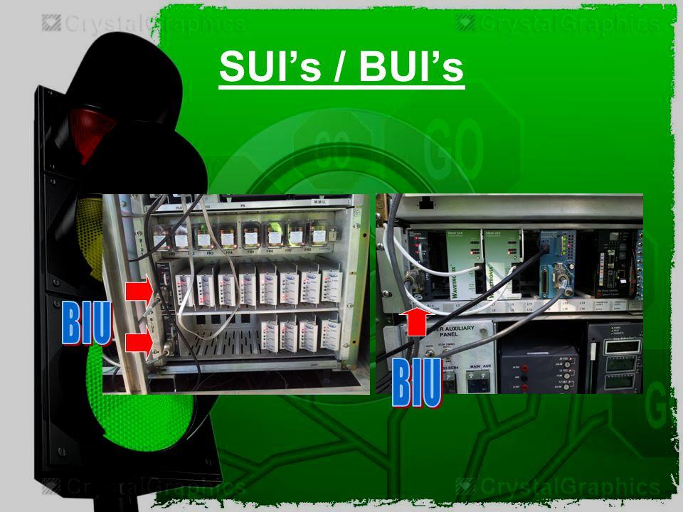 SUI's / BUI's BIU BIU