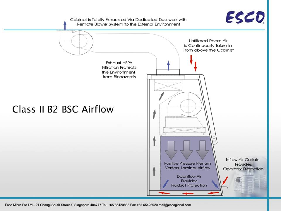 Class II B2 BSC Airflow
