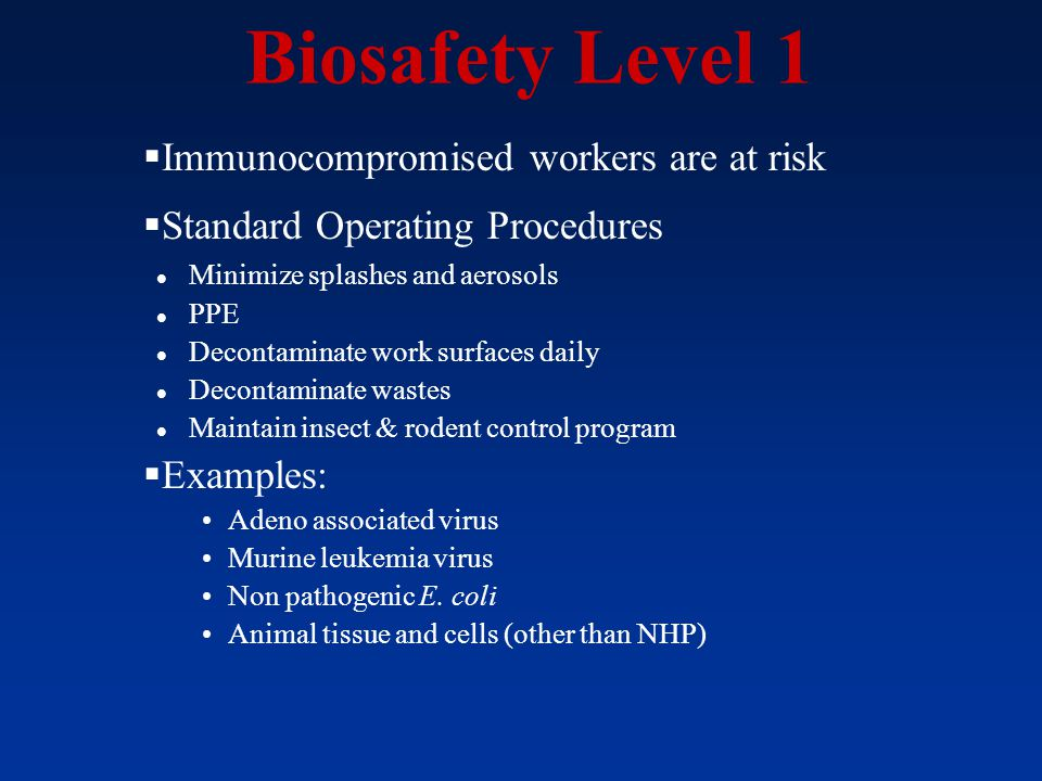 Biosafety Level 1 Immunocompromised workers are at risk