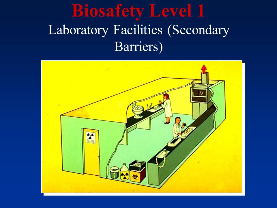 Biosafety Level 1 Laboratory Facilities (Secondary Barriers)