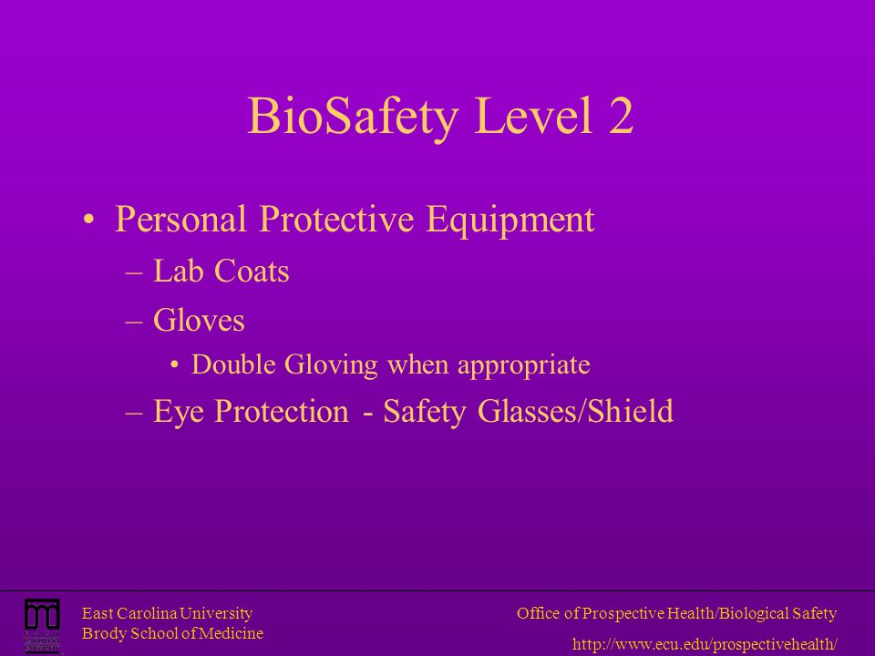 BioSafety Level 2 Personal Protective Equipment Lab Coats Gloves