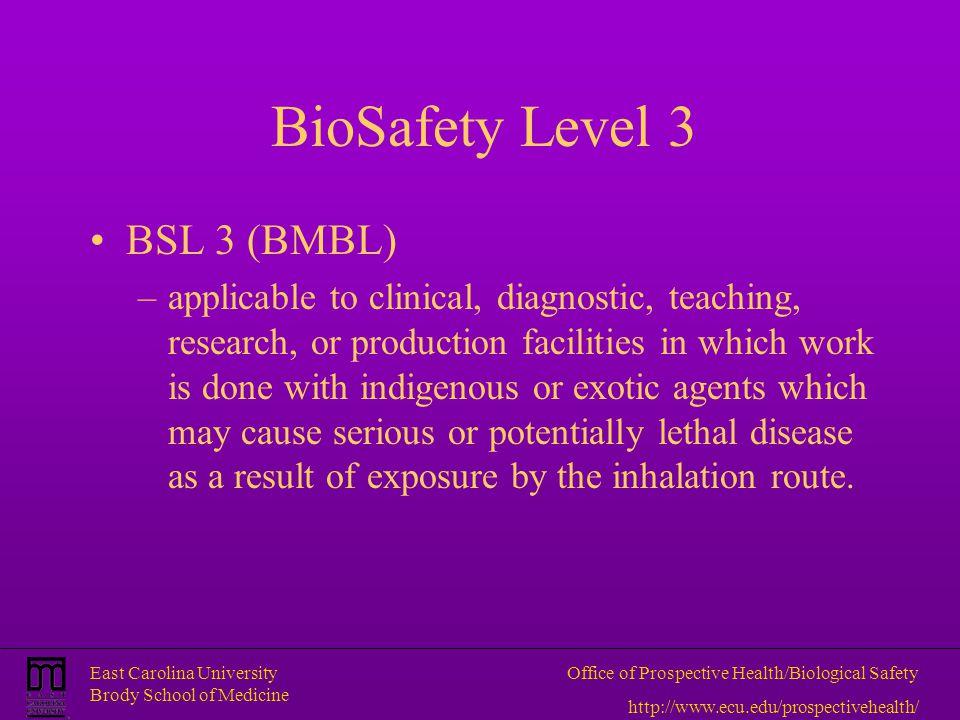 BioSafety Level 3 BSL 3 (BMBL)