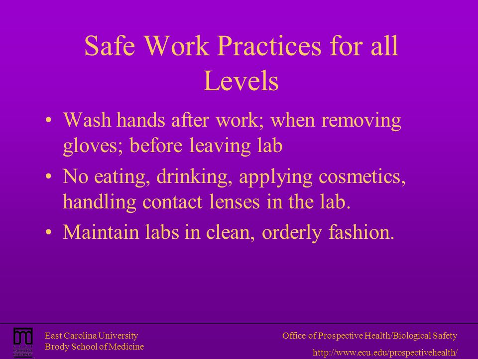 Safe Work Practices for all Levels