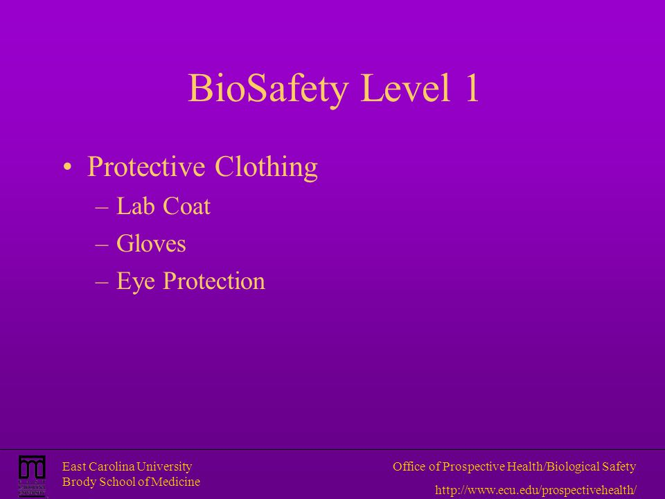 BioSafety Level 1 Protective Clothing Lab Coat Gloves Eye Protection