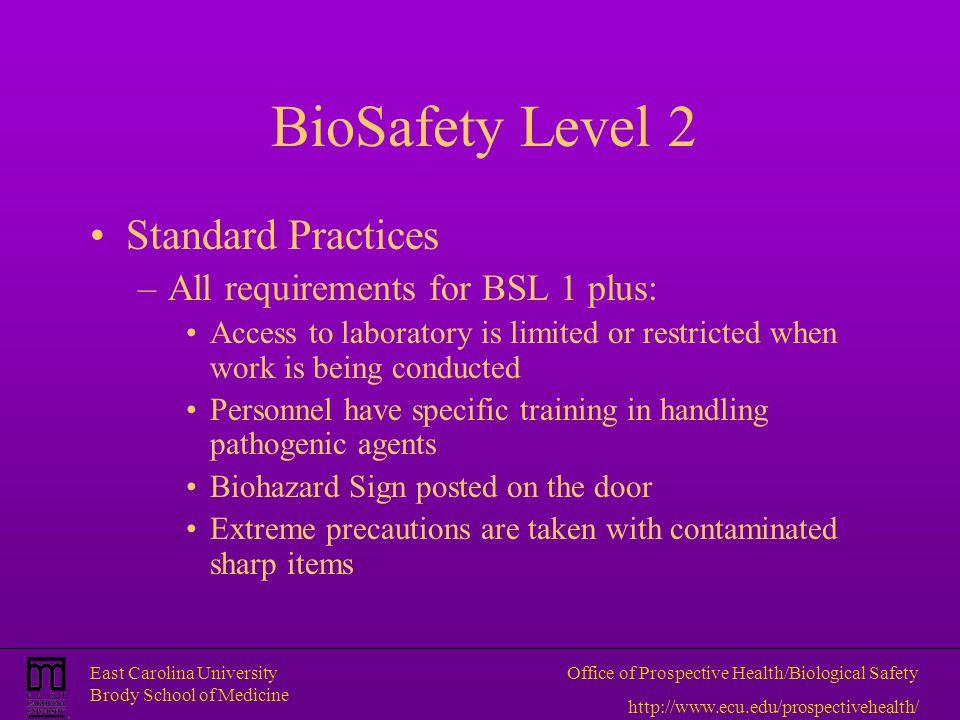 BioSafety Level 2 Standard Practices All requirements for BSL 1 plus: